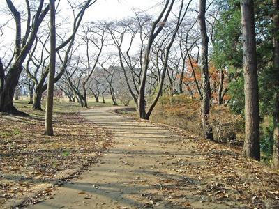 三神峯公園9.jpg